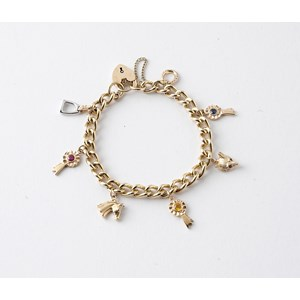 Charm Bracelet with Seven Solid Charms